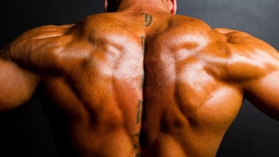 ¿Cómo tener una espalda ancha?