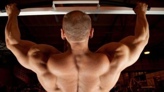 ¿Cómo ganar masa muscular en la espalda?