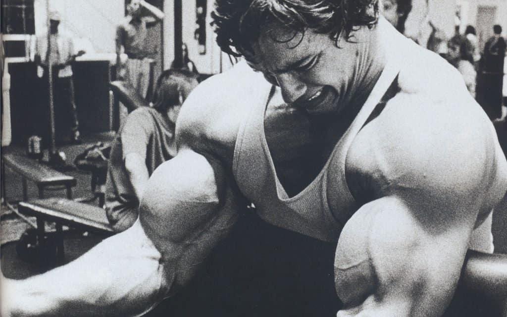 Arnold bíceps