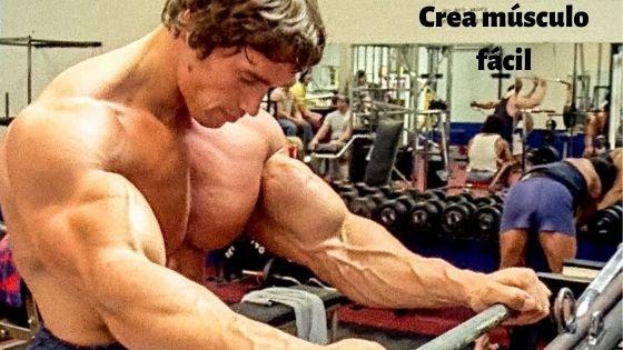 como Arnold, puedes aumentar tu masa muscular