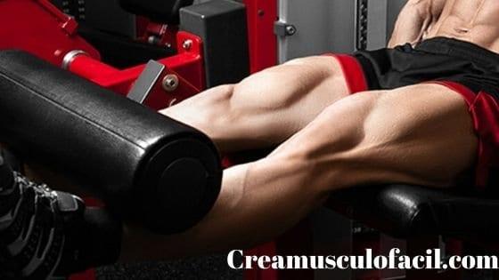 Ejecución correcta de las extensiones de piernas