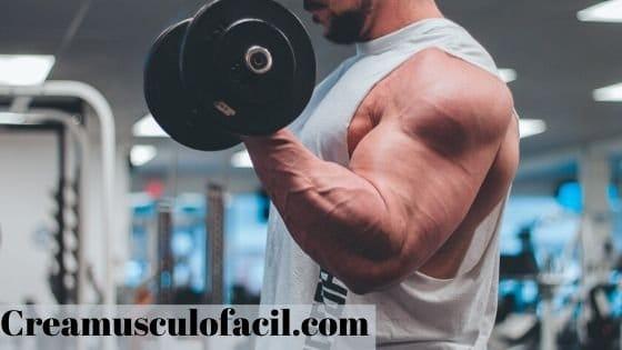 ganar masa muscular estilo culturista
