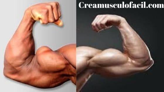 diferencia de la inserción de los bíceps