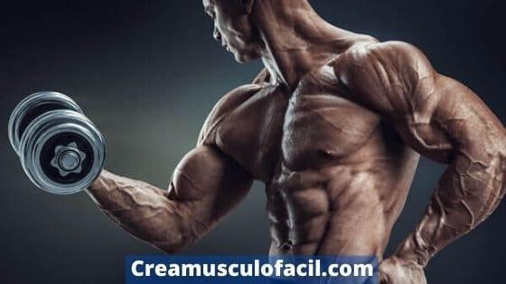 Cómo sacar el máximo provecho a los ejercicios de bíceps