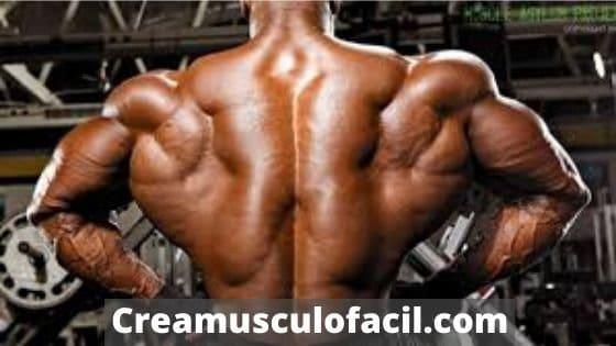 Nutrición para desarrollo muscular