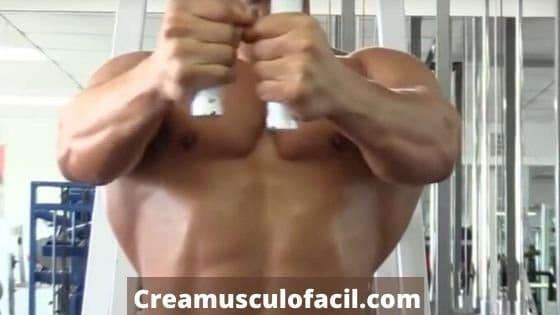 Acción muscular de la máquina contractora