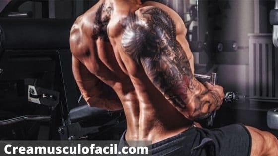 Principios de entrenamiento para una espalda ancha