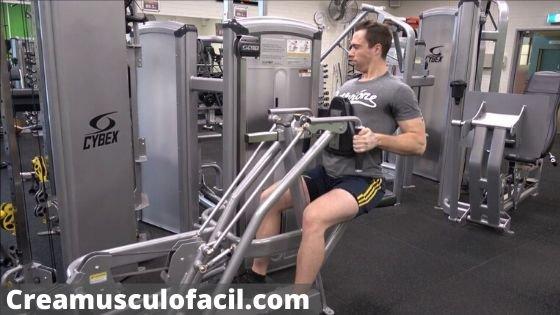 Acción muscular