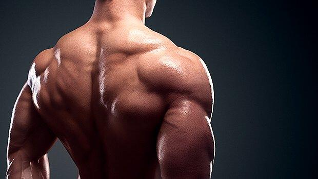 Elevación trasera en polea para el desarrollo de la parte posterior del hombro
