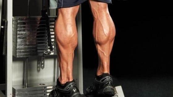 Como ganar masa muscular en los gemelos