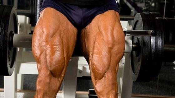Como aumentar masa muscular en los muslos